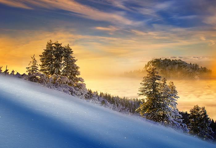http://pulson.ru/wp-content/uploads/2011/01/winter-view12.jpg