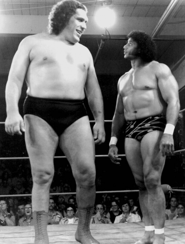 andre the giant summary essay