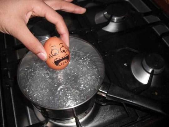 И опять прикольные яйца. фото 3 :: ГИГАМИР.