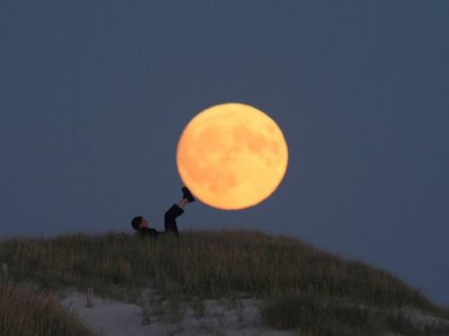 http://pulson.ru/wp-content/uploads/2011/09/Moon_Play_11.jpg