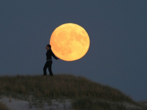 http://pulson.ru/wp-content/uploads/2011/09/Moon_Play_12.jpg