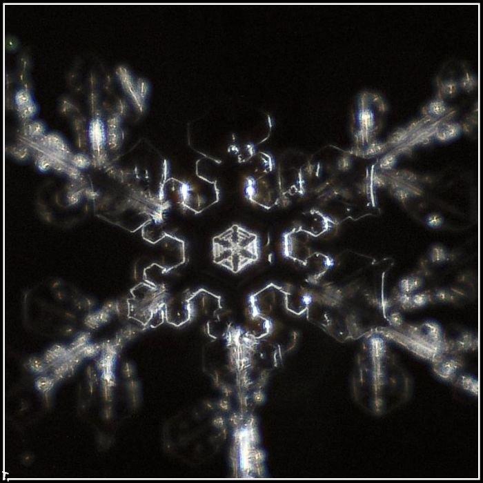 http://pulson.ru/wp-content/uploads/2011/09/Stunning_snowflakes_photos_12.jpg