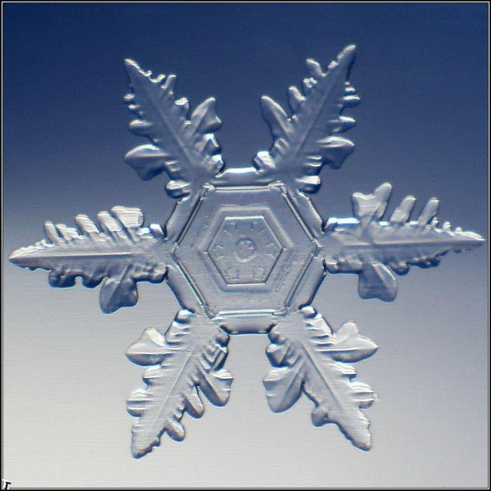 http://pulson.ru/wp-content/uploads/2011/09/Stunning_snowflakes_photos_13.jpg
