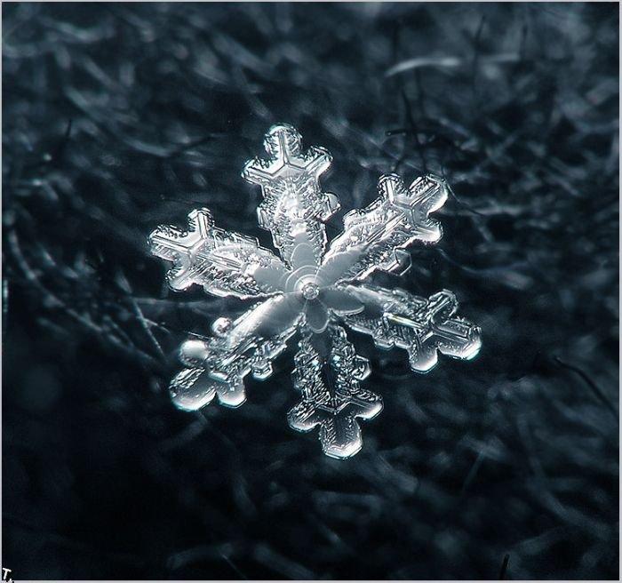 http://pulson.ru/wp-content/uploads/2011/09/Stunning_snowflakes_photos_17.jpg