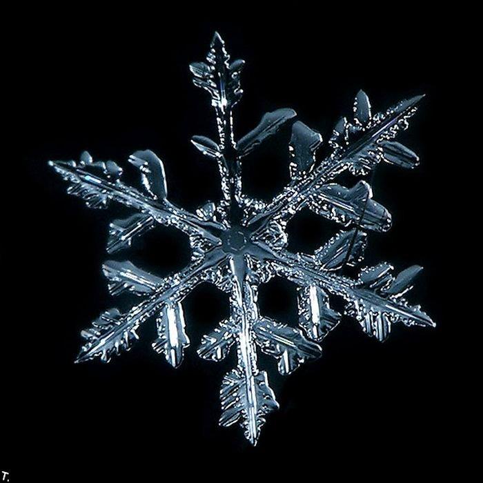http://pulson.ru/wp-content/uploads/2011/09/Stunning_snowflakes_photos_19.jpg