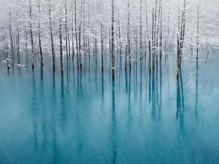 http://pulson.ru/wp-content/uploads/2011/12/24.jpg