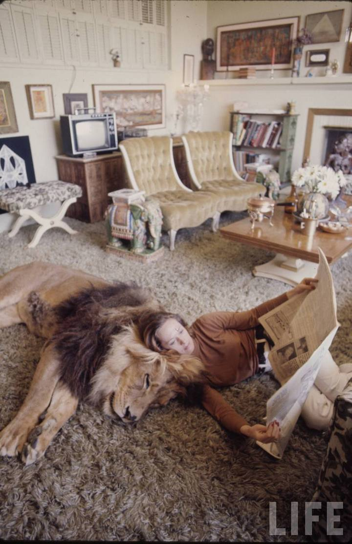 Типпи Хедрен и ее домашний лев