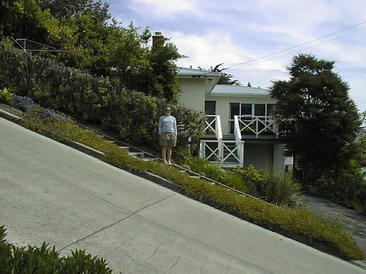 самая крутая улица занесенная в Книгу рекордов Гиннеса, улица на крутом склоне. Самая крутая улица Baldwin Street в Новой Зеландии (10)