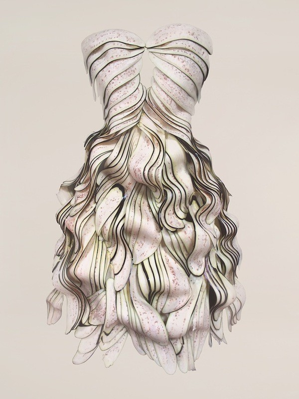 Платья из еды, необычные платья (9)