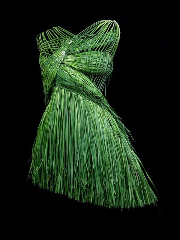 Платья из еды, необычные платья (7)