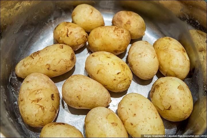 Три небанальных блюда из молодого картофеля (20)