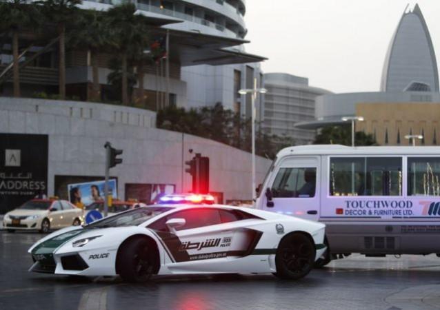 Раскошные полицейские машины в Дубаи (16)