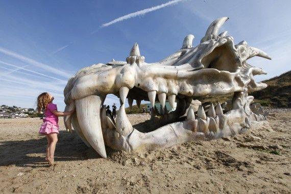 Череп дракона на пляже в Великобритании (4)