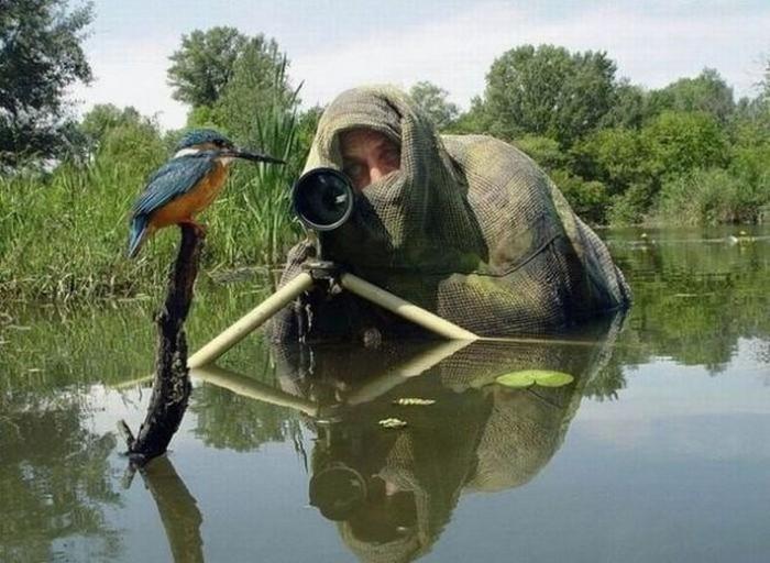 профессиональные фотографы (26)