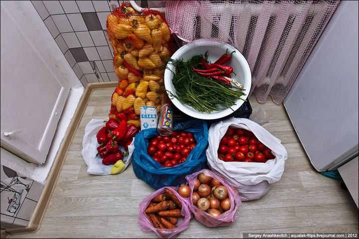Как засолить помидоры, пошаговая инструкция с фото (2)