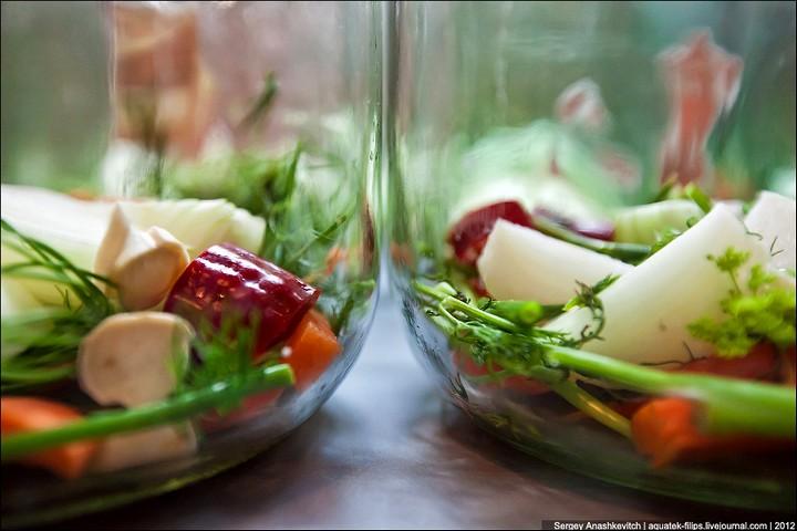 Как засолить помидоры, пошаговая инструкция с фото (7)