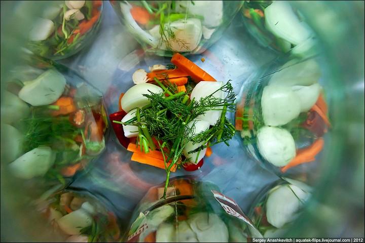 Как засолить помидоры, пошаговая инструкция с фото (9)