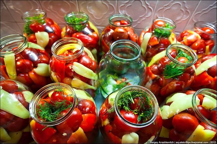 Как засолить помидоры, пошаговая инструкция с фото (10)