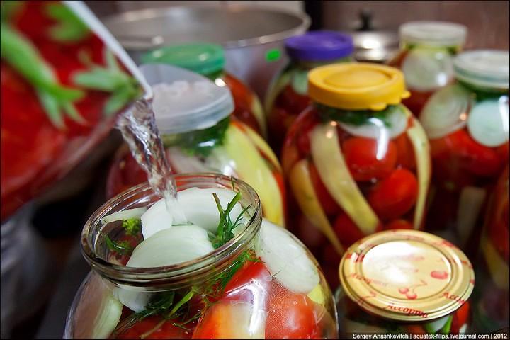 Как засолить помидоры, пошаговая инструкция с фото (13)