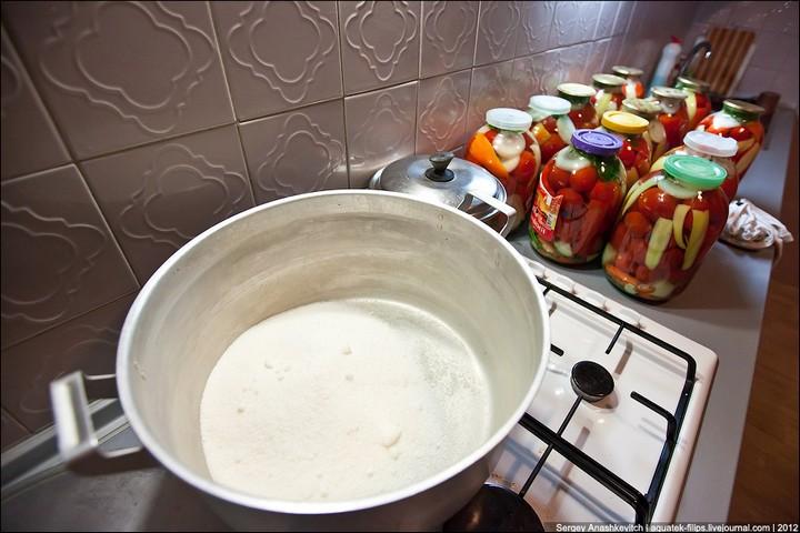 Как засолить помидоры, пошаговая инструкция с фото (14)