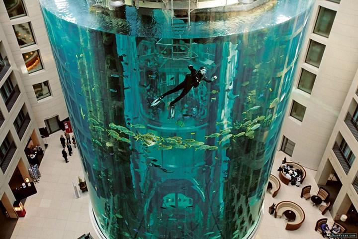 """Самый большой аквариум в отеле """"Radisson Blu"""", Германия (1)"""