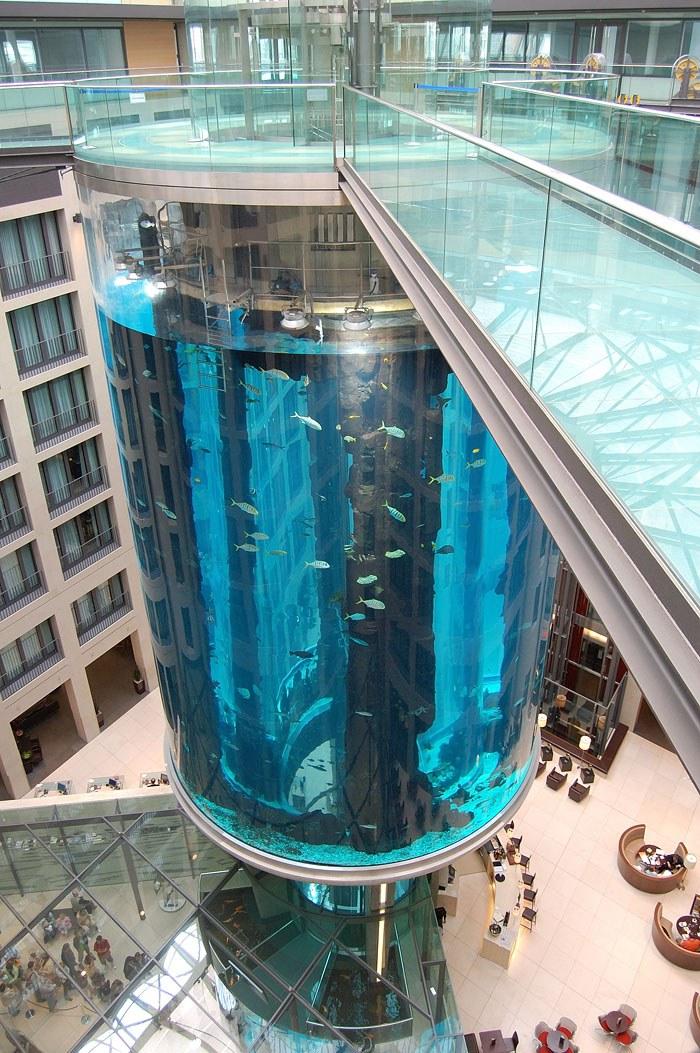 """Самый большой аквариум в отеле """"Radisson Blu"""", Германия (12)"""