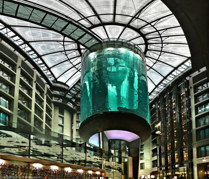 """Самый большой аквариум в отеле """"Radisson Blu"""", Германия (13)"""