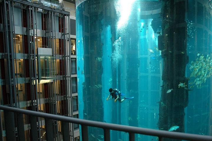 """Самый большой аквариум в отеле """"Radisson Blu"""", Германия (4)"""