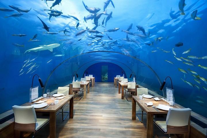 Самые необычные рестораны и бары мира с красивым видом (6)