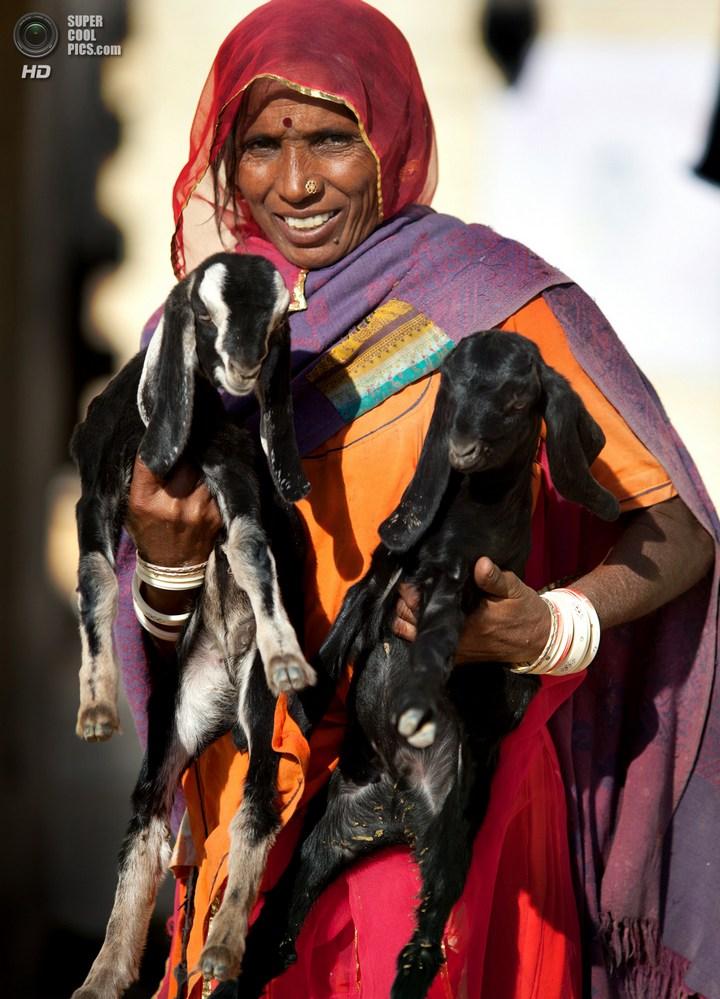 Интересные факты о Индии (18)