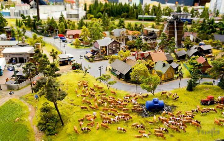 Гигантский макет. Россия в миниатюре (31)