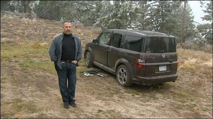 Медведи растерзали салон автомобиля (4)