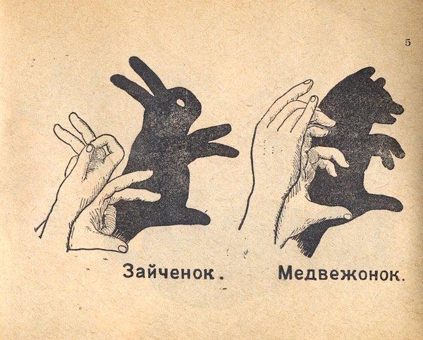 Как сделать тени животных на стене (5)