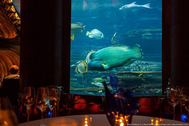 Необычный ресторан-аквариум в отеле «Бурж Аль Араб» (4)