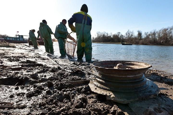 Как ловят рыбу в Астрахани (5)