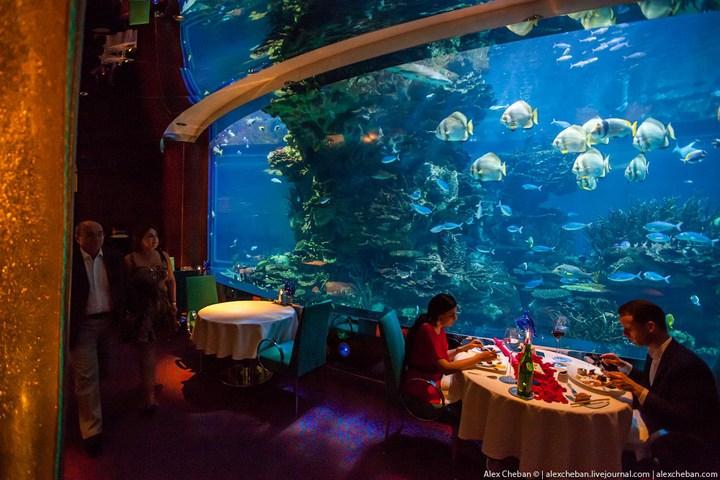Необычный ресторан-аквариум в отеле «Бурж Аль Араб» (8)