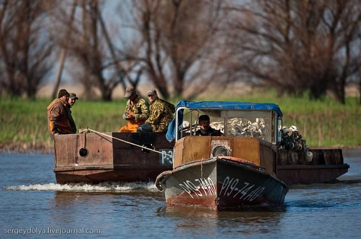 Как ловят рыбу в Астрахани (18)