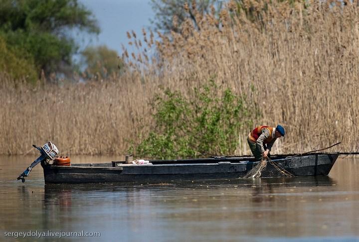Как ловят рыбу в Астрахани (34)