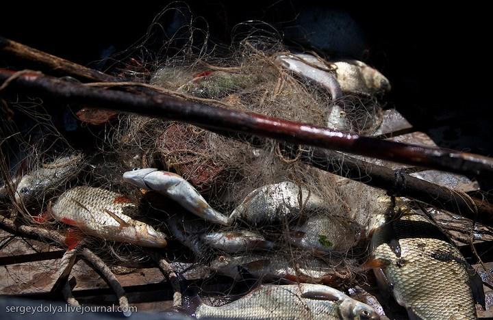 Как ловят рыбу в Астрахани (35)