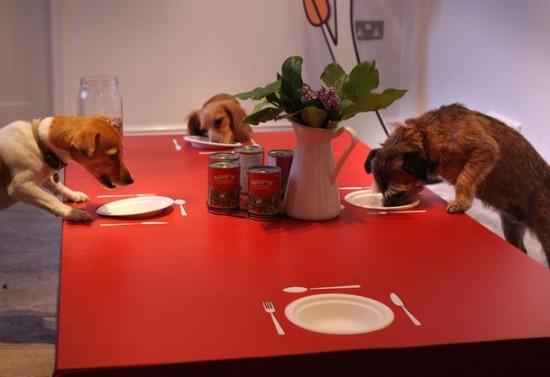 Необычный ресторан для собак (1)