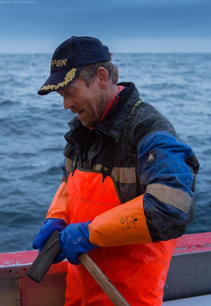Как ловят треску в Норвегии (12)
