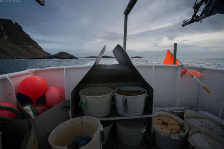 Как ловят треску в Норвегии (5)