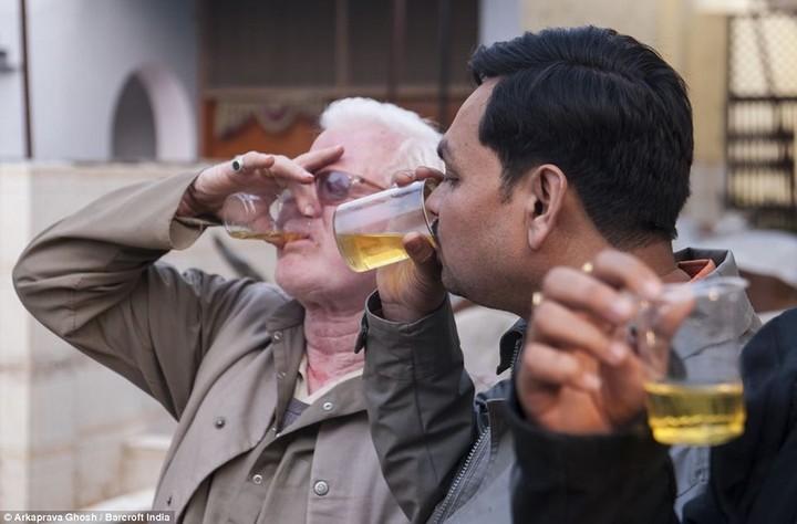 Индусы считают что коровья моча обладает лечебными свойствами (2)