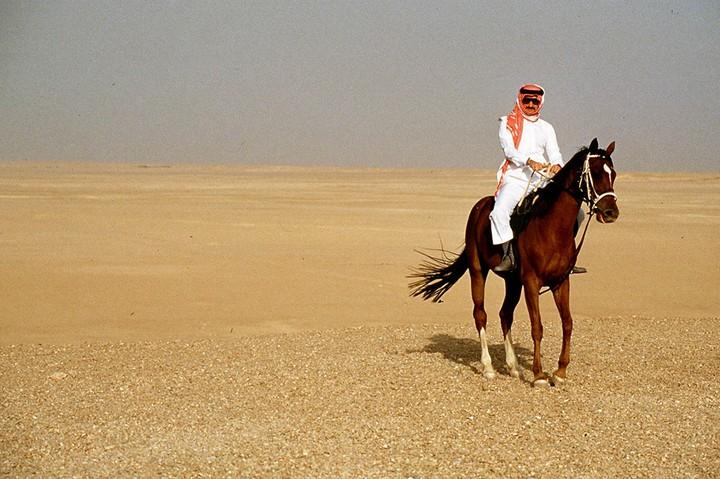 Личный самолет принца аль-Валид ибн Талал ибн Абдулазиз ас-Сауда, Золотой самолет арабского принца (4)