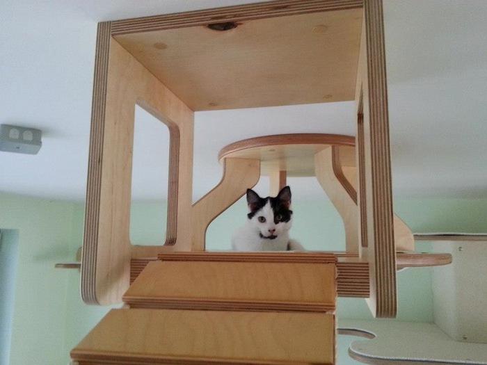 Игровая мебель для кошек (5)