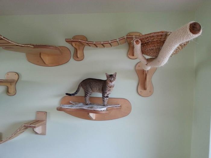 Игровая мебель для кошек (7)
