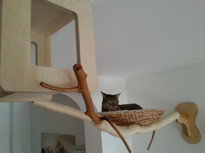 Игровая мебель для кошек (9)