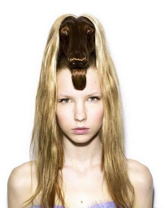 Самые необычные женские прически в форме животных (8)