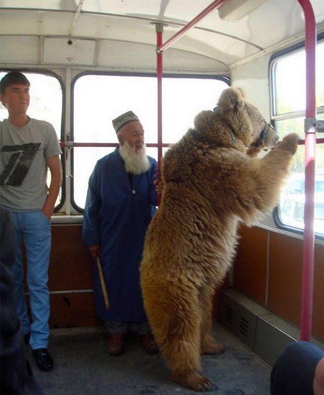Это Россия детка! (21)