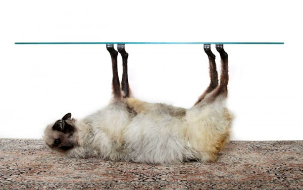 Необычные столики в виде животных (5)